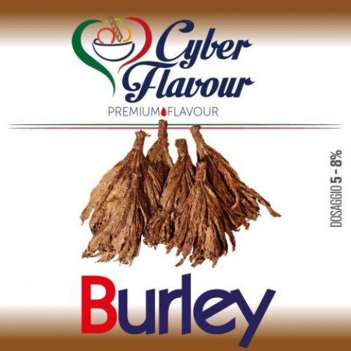 Aroma Concentrato Burley Cyber Flavour